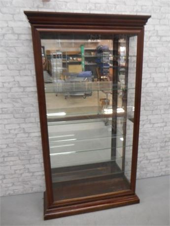 PHILIP REINSCH CO. LARGE DISPLAY CASE/CABINET WITH  GLASS SHELVES
