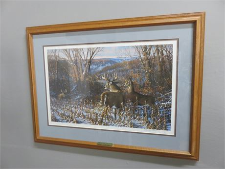 Oak Ridge Challenge Whitetail Deer By Michael Sieve