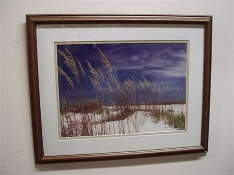 FRAMED AND DOUBLE MATTED PHOTO - COASTAL/DUNES