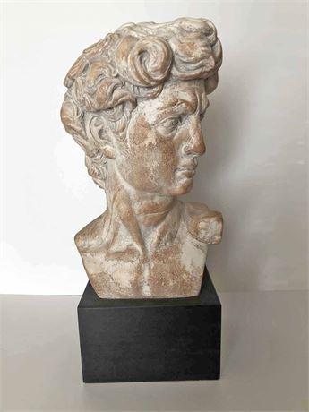 Statue of David Museum Replica Bust
