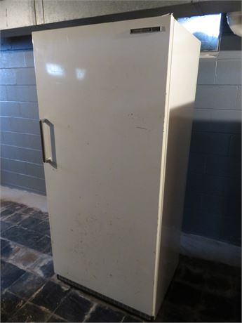 GE 21.1 cu. ft. Upright Freezer