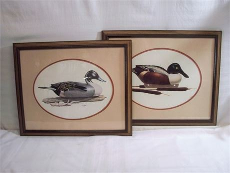 2 FRAMED AND DOUBLE OVAL MATTED DUCK PRINTS