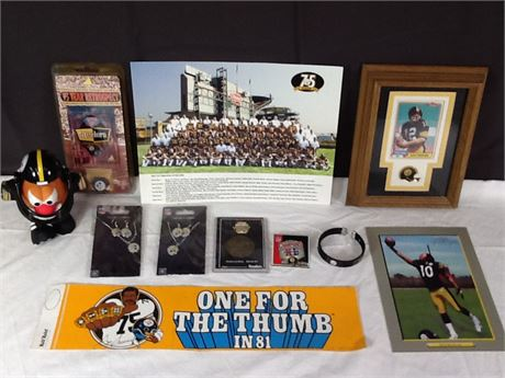 Pittsburgh Steelers Lot