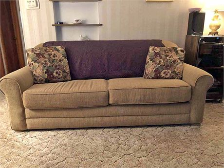 Sealy Sofa Bed