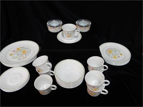 Vintage Discontinued Corelle Meadow Pattern Set