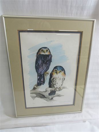 FRAMED MATTED SIGNED & NUMBERED (#8/20) - PYGMY OWLS II BY WILLIAM WARREN DAILEY