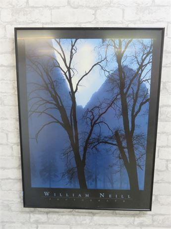 William Neill Framed Poster Print