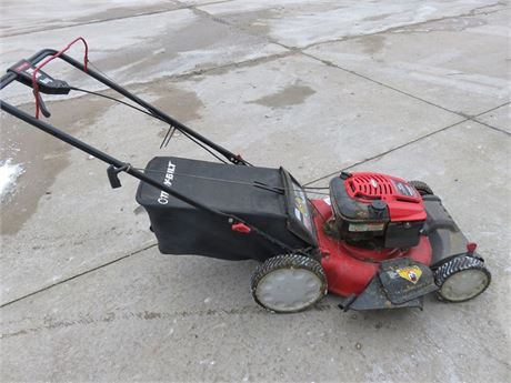 TROY BILT TB230 Self-Propelled Lawn Mower