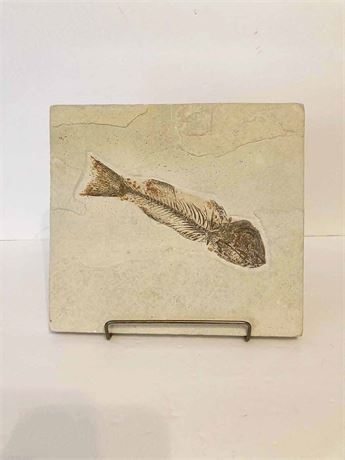 Fossil Herring Plaque