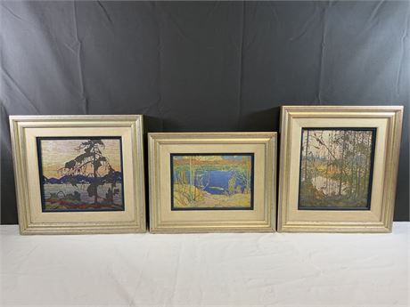 (3) Framed and Double Matted Naturescape Wall Art