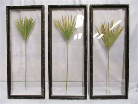 SET OF 3 FRAMED PAPYRUS FRONDS