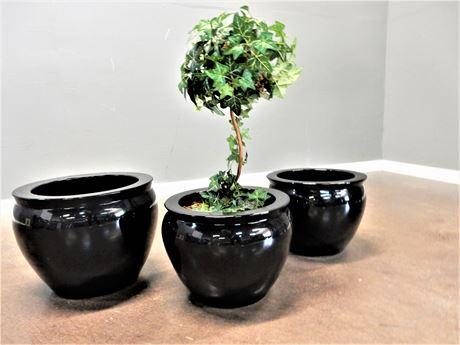Three Black Ceramic Planter Pots with Artificial Topiary