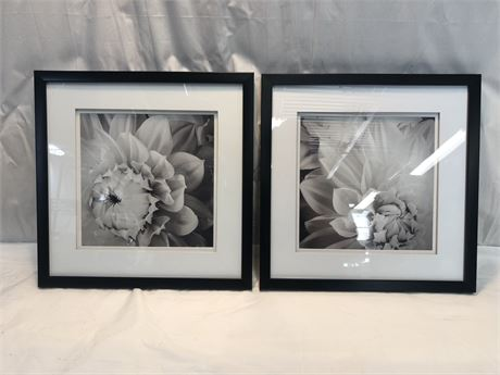Black and White Floral Wall Art